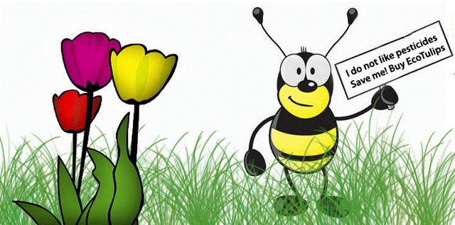 Bee_Buy_EcoTulips